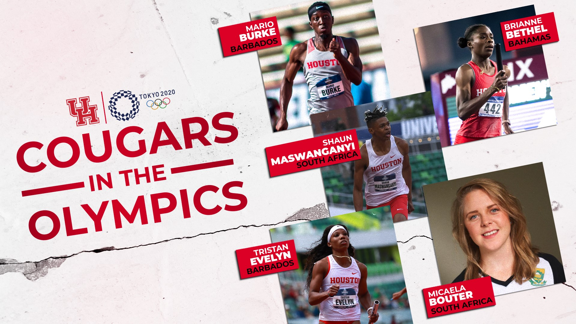 Cougars in the Olympics